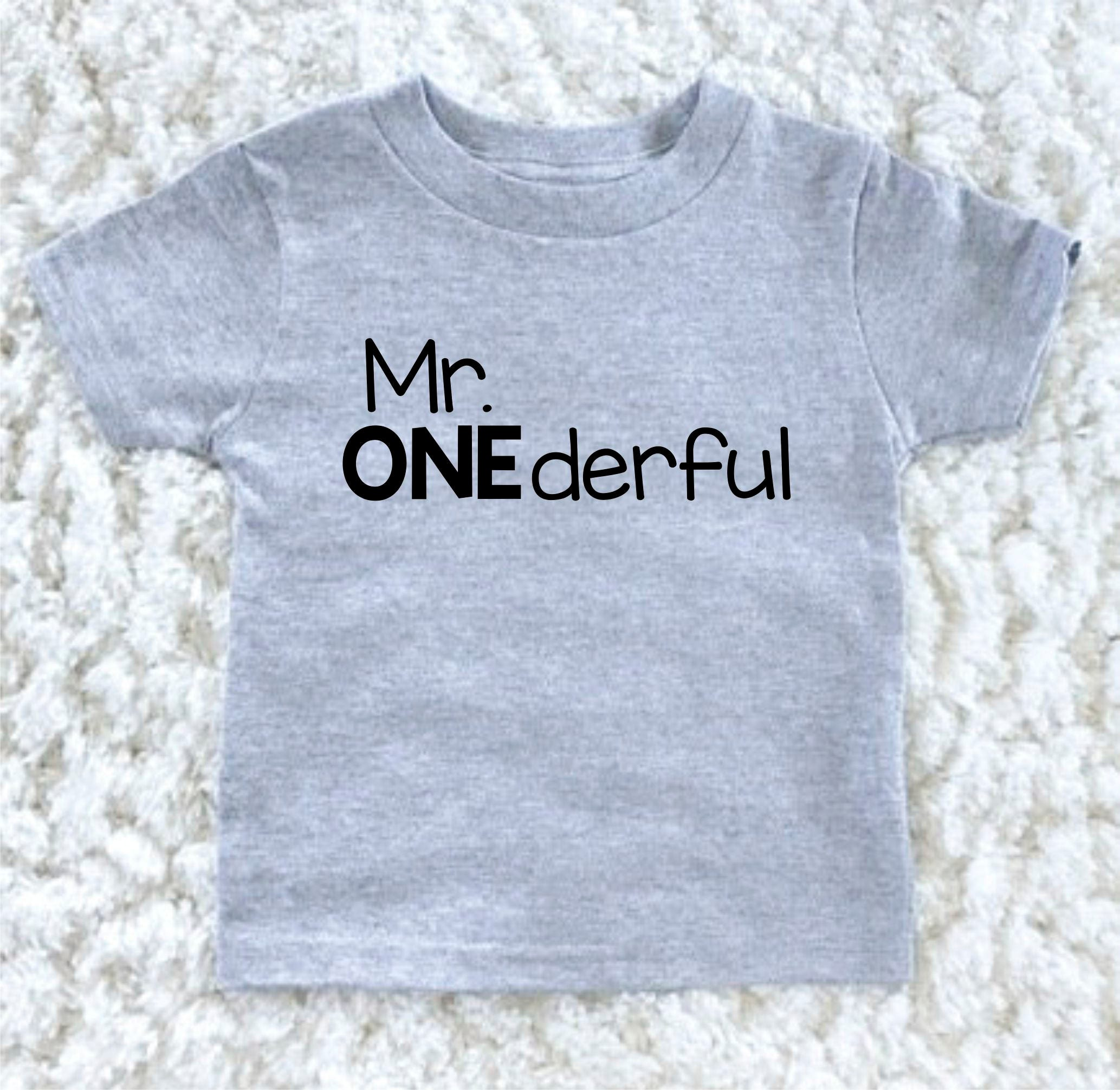 Mr ederful Birthday Shirt First Birthday Boy Outfit Birthday