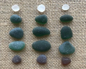 """Seaham Sea Glass Set of 15 Genuine Genuine English Sea Glass """"Christmas Tree"""". Loose, Flawless, Thick and Heavily Frosted. FREE U.K. Deliver"""