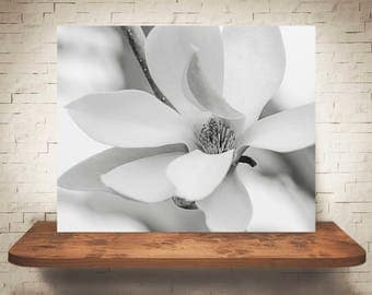 Magnolia Photograph - Fine Art Print -  Black White Photo - Wall Art - Floral Decor - Wall Decor - Pictures of Flowers - Gifts