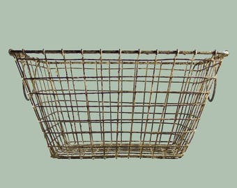 Vintage French Oyster Wire Basket