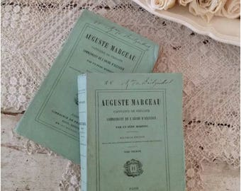 Set of 2 Antique French Shabby Chic Tattered Books