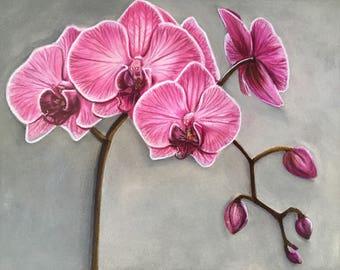 "ORIGINAL 8x10"" orchid colour pencil drawing"