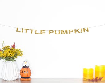 Little Pumpkin Banner | 1st Birthday Cake Topper | Birthday Party Decor | Fall Baby Shower Banner | Fall Cake Topper | Smash Cake Topper