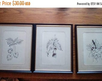 ON SALE 20% off Three Original Framed Fruit and Vegetable Pen and Ink Drawings Kitchen Decor Garden Art Cherries Strawberries Radishes Pen a