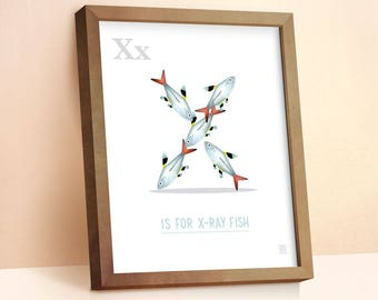 X-Ray Fish Print | Nursery Animal Print | Alphabet letters | Alphabet Print | ABC letters | Animal Prints for Nursery | Nursery Wall Art