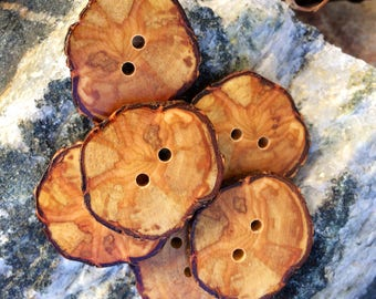 Unique Willow Wood Buttons // Handmade Wooden Buttons // Set of 6 Wood Buttons