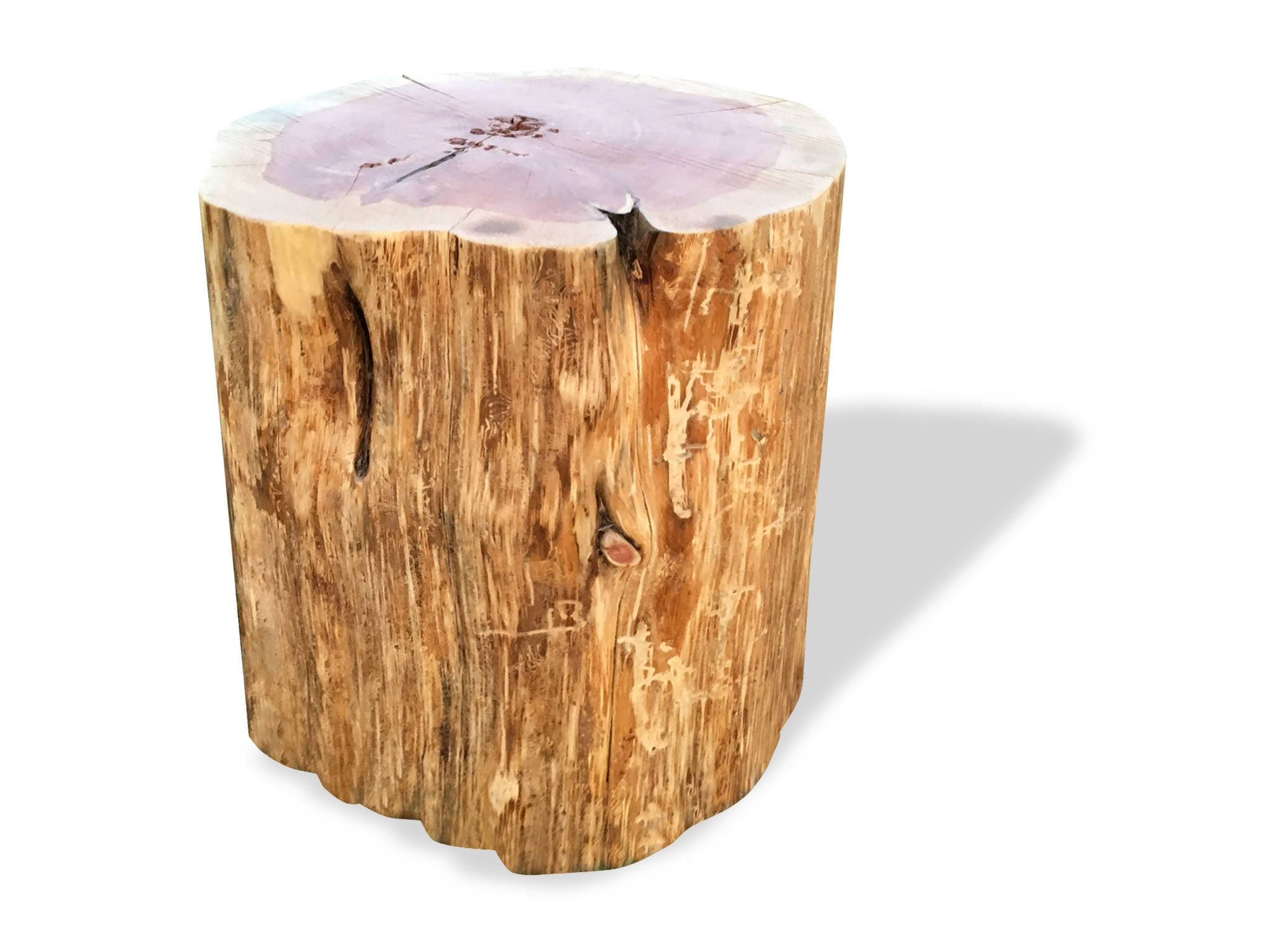 Stump Table Real Cedar Log Furniture Stump Coffee Table