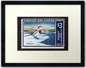 Scott RW 34 Federal Duck Stamp Picture