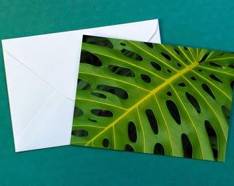 Tropical Leaf Greeting Card | Maui, Hawaii | Blank