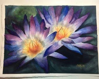 Oregon Water Lillies
