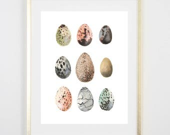 Spotted Eggs Watercolor Print / Painting / Gifts for her / Home Decor / Gifts for mom / Farm Decor/ Farmhouse art / house warming