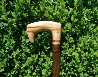 Cardigan Style Cane with Maple Handle and Alder Shank, Walking Stick, Cane, Walking Cane