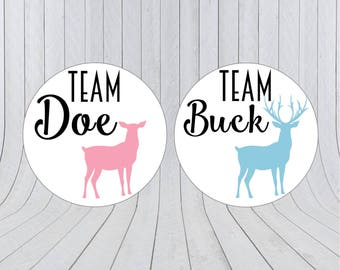 Team boy team girl stickers, Gender reveal stickers, Team pink, Team blue, he or she, pink or blue, Gender reveal party, 217