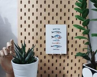 Post card • fish