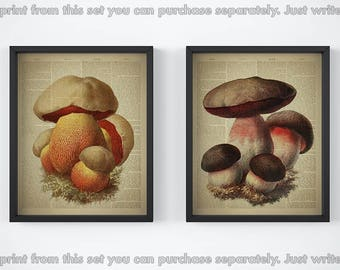 Dictionary page print, Print set, Vegetable print, Kitchen wall art, Mushroom poster, Botanical prints, Vintage art print, Mushroom decor