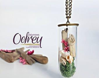 Terrarium, botanical jewelry, beach, shell, Globe glass, brass, decorative mirror, lucky chain necklace