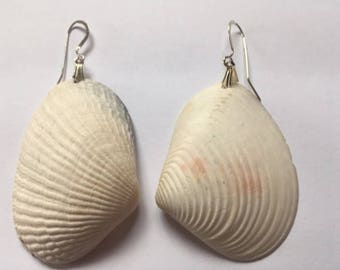 Beachy Large White Seashell Earrings