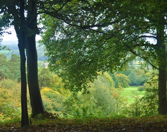 English Woodland Countryside, Deepdene, Surrey, photo print, British countryside, Scenic Photography, Picturesque print, England,