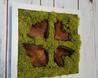 Chartreuse reindeer moss and heart-shaped pods