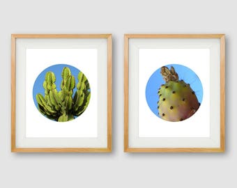Cactus Wall Art, Cactus Prints, Gallery Wall, Cactus PRINTABLES, Circle Art, Cactus Photography, Tropical Print, Botanical Print, Desert Art