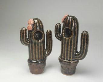 Cactus pipe tobacco pipe