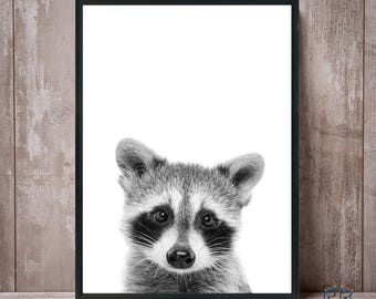 Racoon Print, Nursery Wall Art, Nursery Decor, Black and White, Baby Shower, Digital Download, Racoon Poster, Kids Room Decor, Racoon Photo