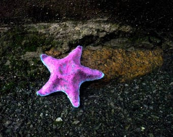 decorative felt starfish