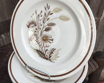 Americana Autumn Mist American Plates