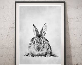 Rabbit Drawing Portrait, Black and white Rabbit Poster, wall art, Animals home decor, Printable instant download, pencil Illustration, kids