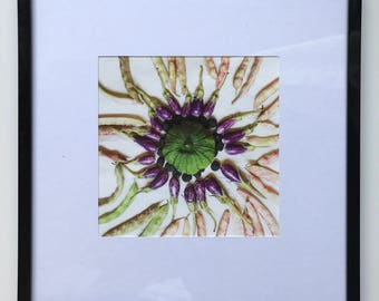 FOOD PHOTOGRAPHY PRINT - farmers market produce art - kitchen art - fine art print - veggie mandala