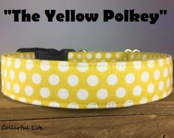"""Yellow Polka Dot Dog Collar - """"Itsy Bitsy Teeny Weeny Yellow Polka Dot Bikini"""""""