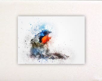 Bird - Watercolor prints, watercolor posters, nursery decor, nursery wall art, wall decor, wall prints 16 | Tropparoba 100% made Italy