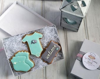 Baby shower cookies, sugar cookies, baby born gift, personalised cookies, baby boy cookies, baby girl cookies