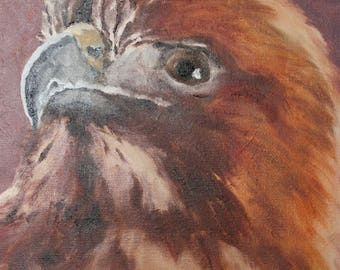 "Red Tailed Hawk Profile - Oil Paint on Canvas 8"" x 10"" by Joel Kratter Art"