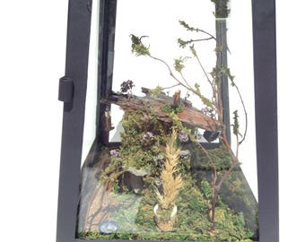 Miniature fairy house garden in glass lantern