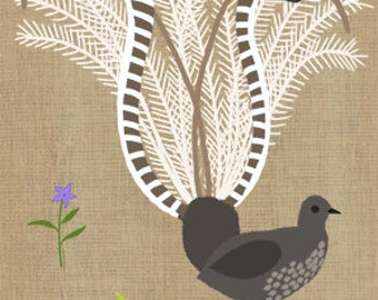 Lyrebird 8 x 10 print - Australian native bird and flowers, kids print, children's art, Australiana