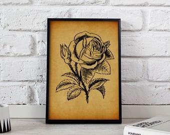Rose Flower Vintage poster, Rose Flower wall art, Rose Flower Vintage wall decor, Rose Flower print, Gift poster