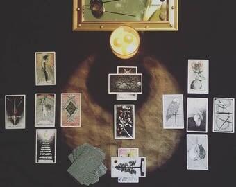 Chaos . Tarot Reading