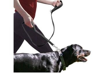 LTG Strong Soft Dual 2 Padded Handles Polypropylene Dog Pet 25mm Leads Leash