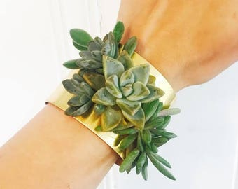 succulent bracelet | floral cuff | corsage | living jewelry