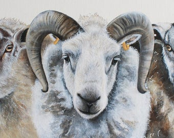Sheep Painting, Sheep Print, Sheep Portrait