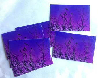 PurpleSky - Stickers