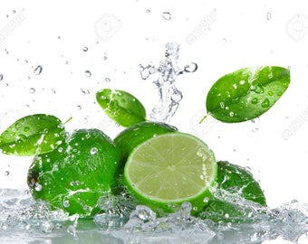 Lime  - A Candle Supply Co. - Premium Fragrance Oil
