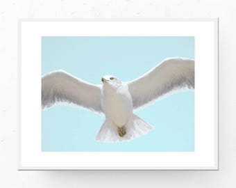 Flying Seagull Print, PASTEL BLUE Wall Art, Printable Wall Art, Digital Download, Pastel Prints, Pastel Blue, Baby Blue, Seagull Art Print