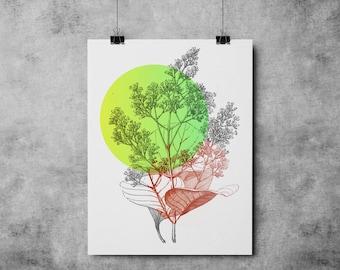 Botanic Illustration 004