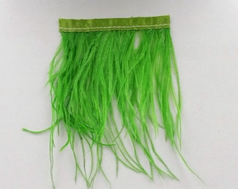 Green filament of ostrich feather band 8cm