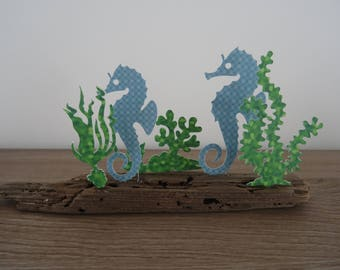 Sea horses amongst the seaweed on Driftwood
