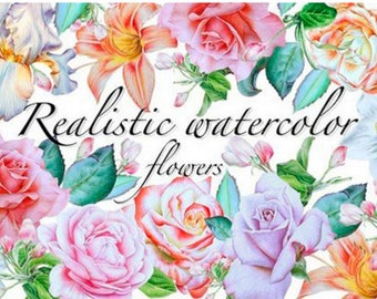 36 Unique Realistic Water Color PNG Digital Downloads