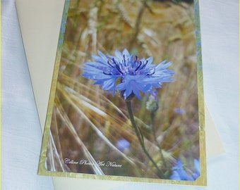 """Double 10 5x15cm made from a photo of cornflower blue """"Cornflower blue and wheat field"""""""