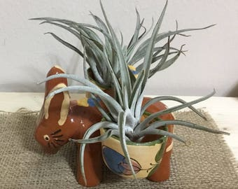 Mexican Pottery Donkey Planter